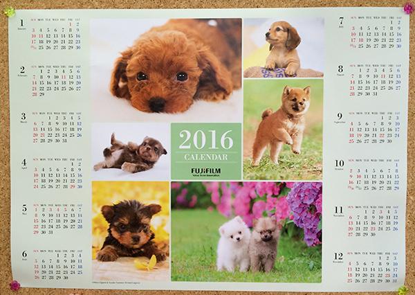 2016年フジカラーペットカレンダー犬