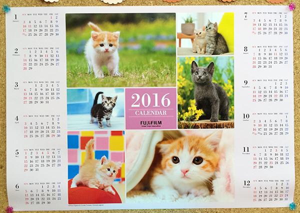 2016年フジカラーペットカレンダー猫